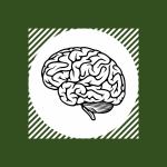 Brain representing mental development